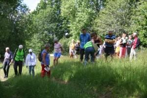 Vi var 35 som deltog i blomstervandringen